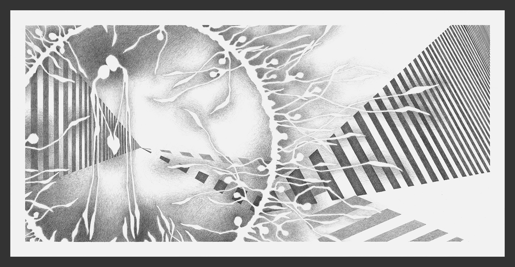 12-Website-Meditation-XII-Graphite-12x24-Astrid-Muller-Karger