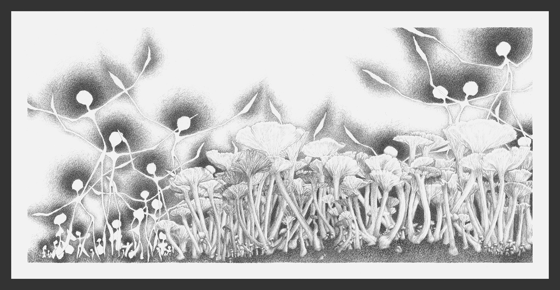 18-Website-Meditation-XVIII-Graphite-12x24-Astrid-Muller-Karger